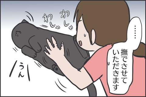 IMG_7463