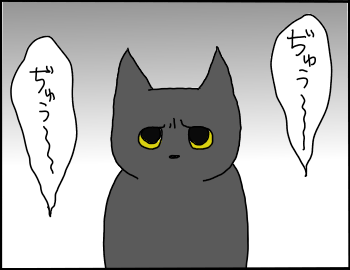 猫を呼ぶ声1