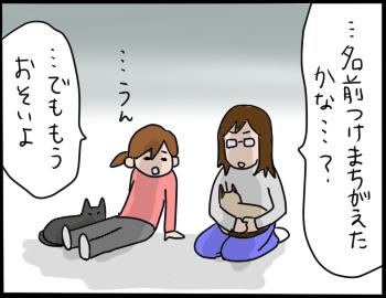 猫の名前8