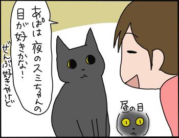 猫の萌えポイント1