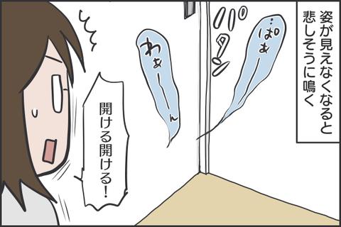 IMG_7494