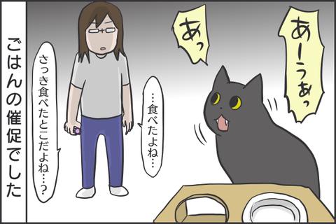IMG_7638