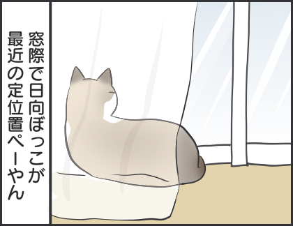 IMG_5118