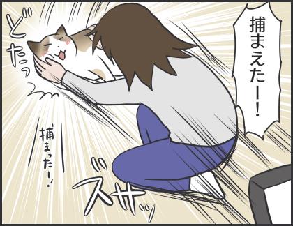 IMG_6760