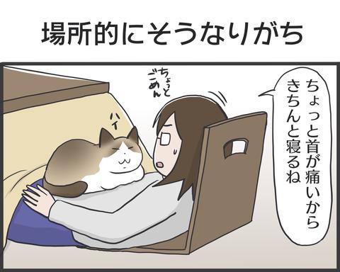 IMG_4473