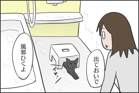 IMG_8569