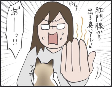 IMG_4699