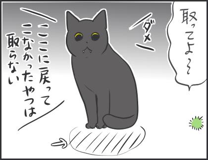 IMG_5461