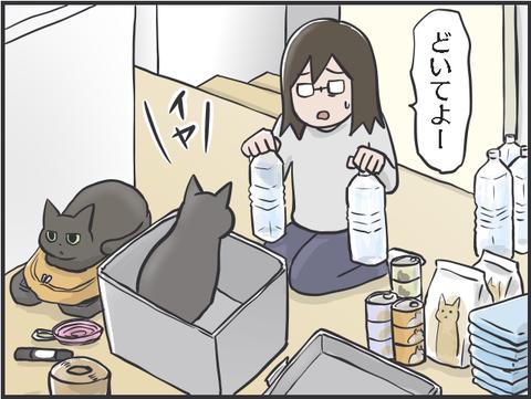 猫と防災2
