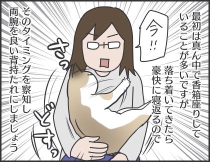 IMG_6390