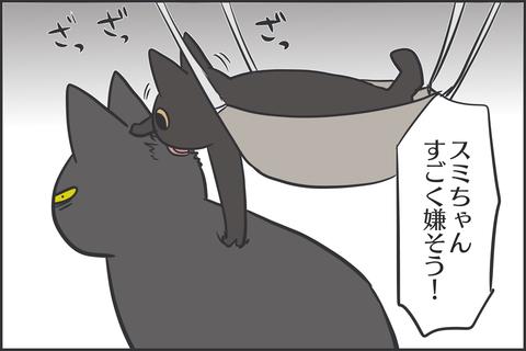 IMG_8620