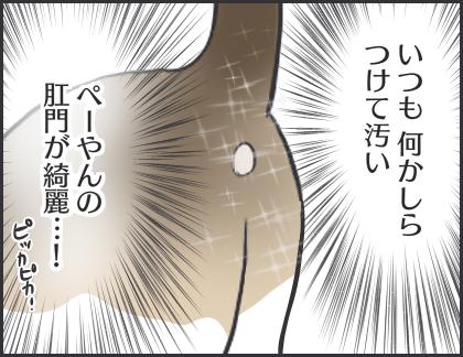 IMG_6577