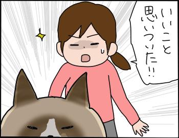 歯の抜き方3