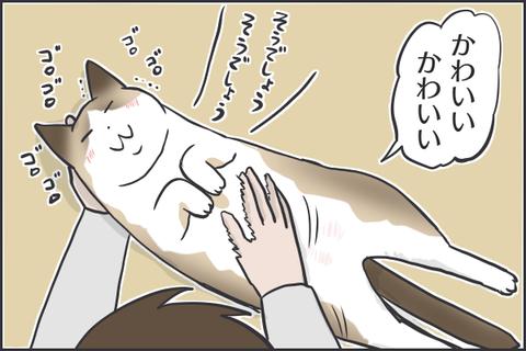 IMG_7225