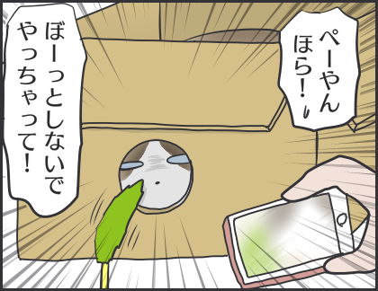 IMG_6754