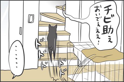 IMG_9124