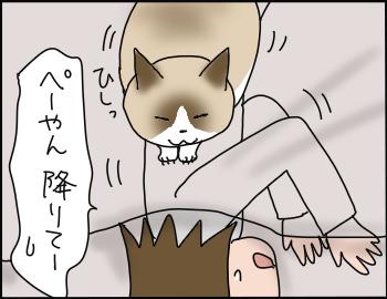 猫の重さ6