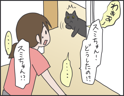 IMG_6068