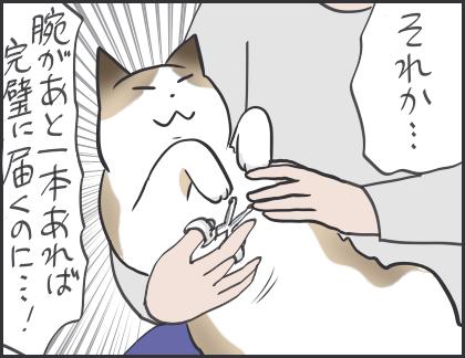 IMG_5383