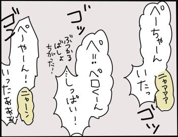歯の抜き方9