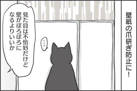 IMG_7743