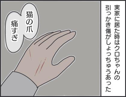 IMG_6633