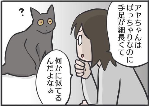 IMG_2374