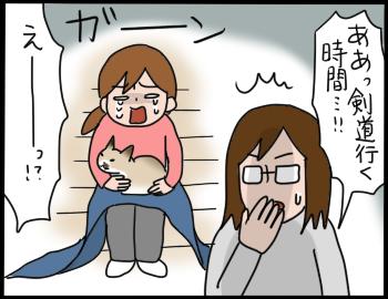 猫を抱きたい7