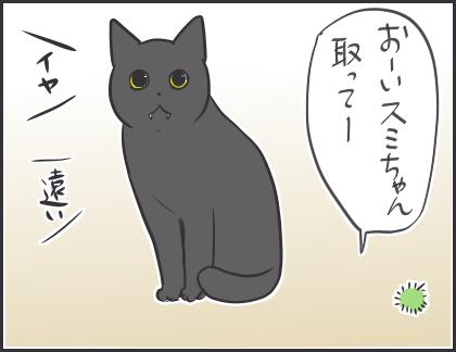 IMG_5460