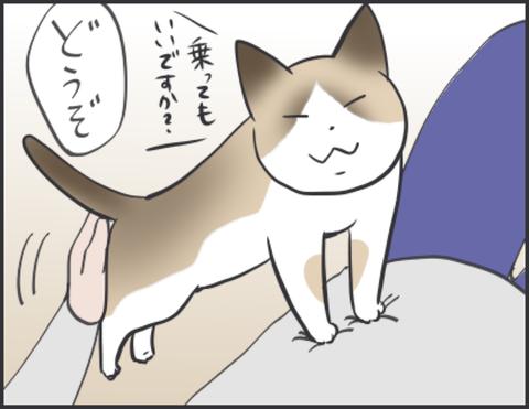 IMG_4701