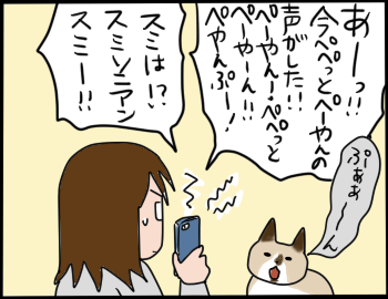 猫の名前3