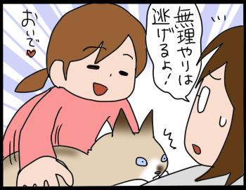 猫を抱きたい2