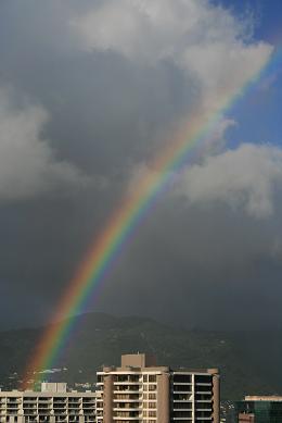 ハワイ虹4