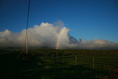 ハワイ虹1