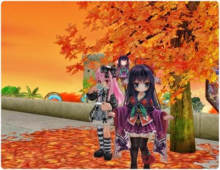 紅葉の木と紅葉円