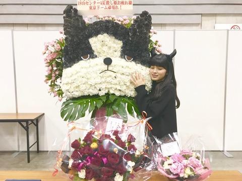 【乃木坂46】大園桃子のブログは鹿児島弁訛りで読んでしまうwww