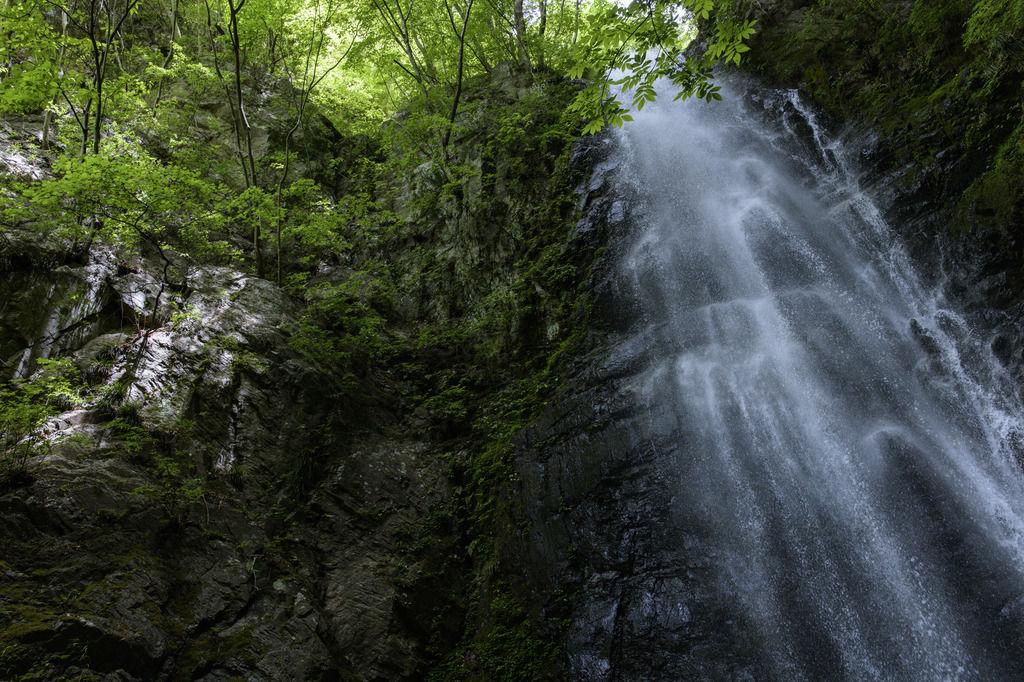【関東の恐怖体験】林間学校で日光の滝に行ったんだ。自殺とかで結構有名なところって言えばわかるかな。
