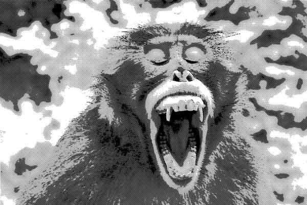 予言をする猿の像が発した言葉