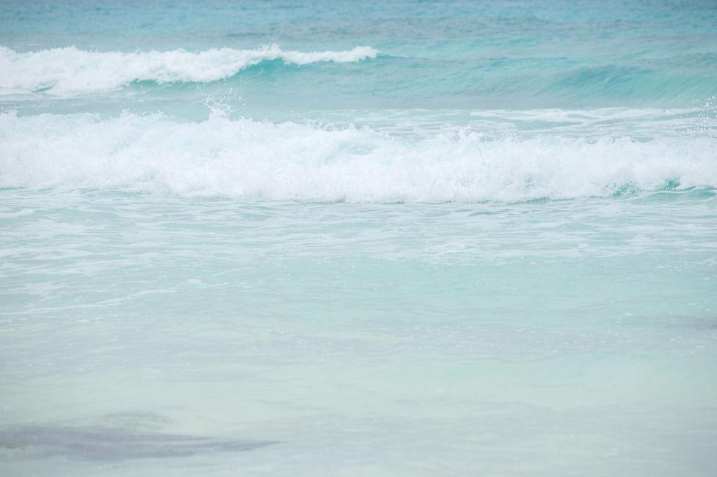【恐怖人間】海中にいたのは・・