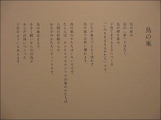 s-IMG_5095