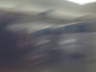 IMG_3420 (320x240)