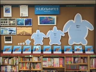s-ウミガメ