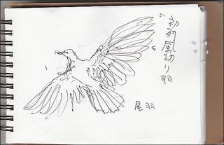 s-IMG_20170709_0001