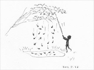 桑の実採り (5)