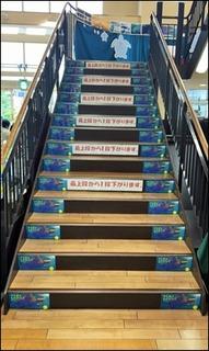 s-004らくだ書店本店「ウミガメものがたり」階段2016年6月29日