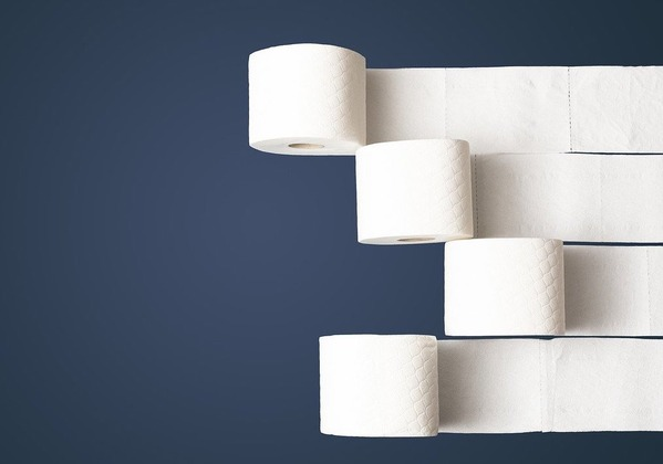 toilet-paper-4974461_1280