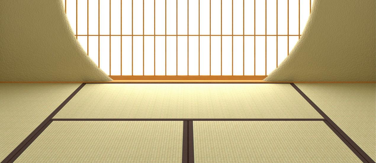 【画像】トイレの床を「畳張り」に?...東京五輪で白人に「日本の伝統トイレ」をwwwww