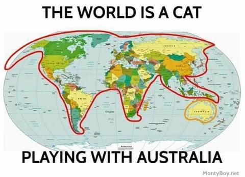 world-cat