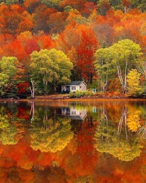 上下対象、紅葉の風景