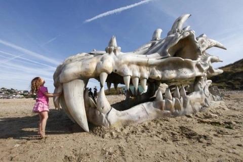 古龍の骨と少女